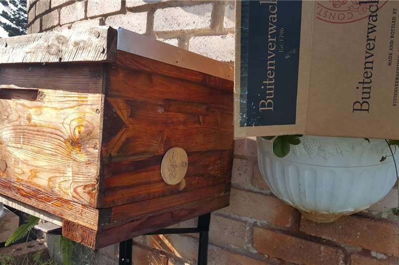 Beehives Bee Hive and Bees for sale Beekeeping