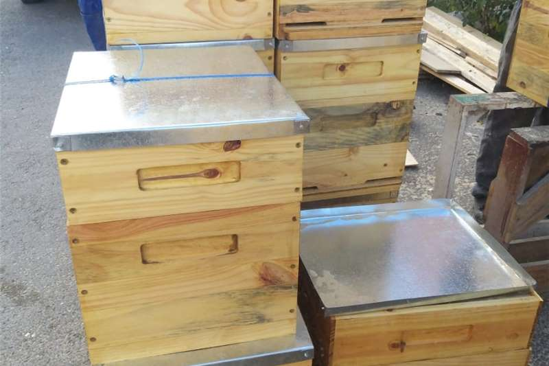 Beehives CWI Beehives and Frames Beekeeping
