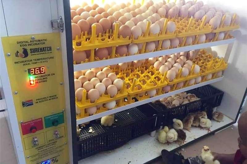 680 Egg Incubator and Hatcher Digital Model SH680 Egg incubator