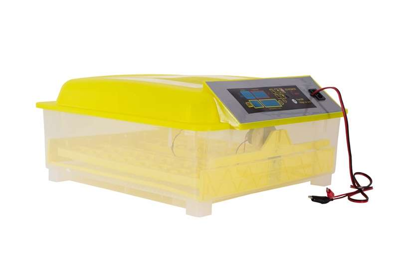 Dual Voltage  48 Egg Automatic Incubators for Sale Egg incubator