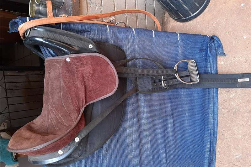 Riding equipment Horse saddle and bridal Equestrian