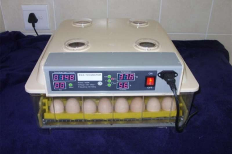 Farming Automatic Incubators for the breeding of birds/qua