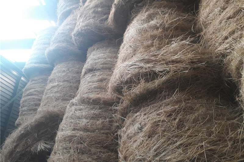 Hay and forage Other hay and forage Teff bales for sale 1.2