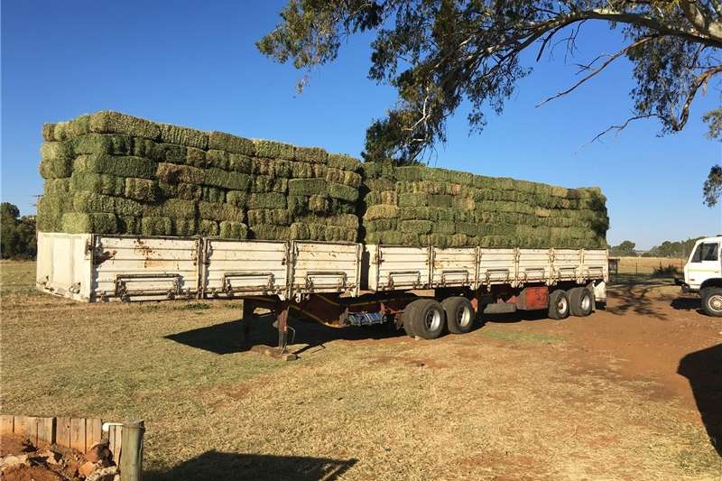 Haymaking and silage Teff and Lucern for Sale