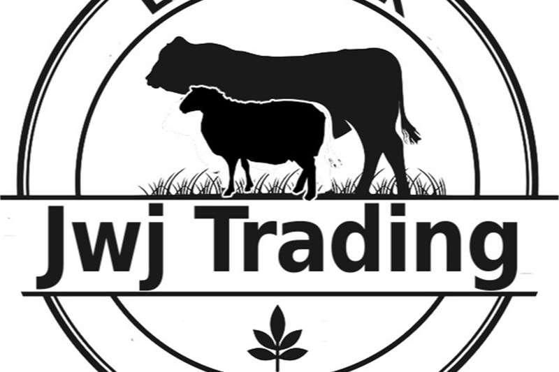 Cattle Wil jy jou Beeste Verkoop? Livestock