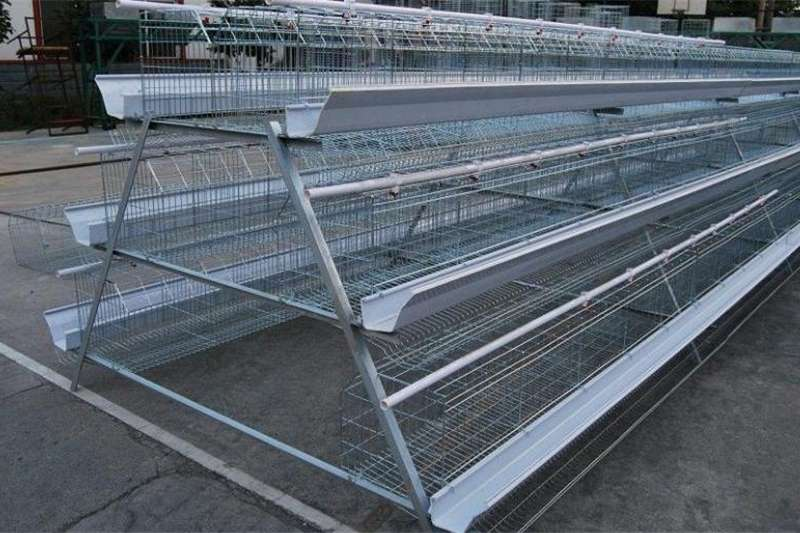 Livestock Chickens Chicken Layers cages avialable in all sizes
