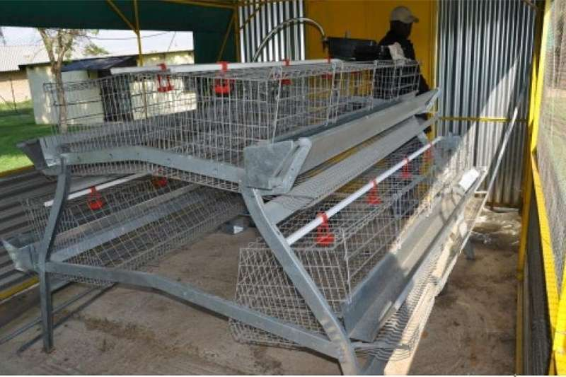 Chickens Quality chicken layer cages for sale Livestock