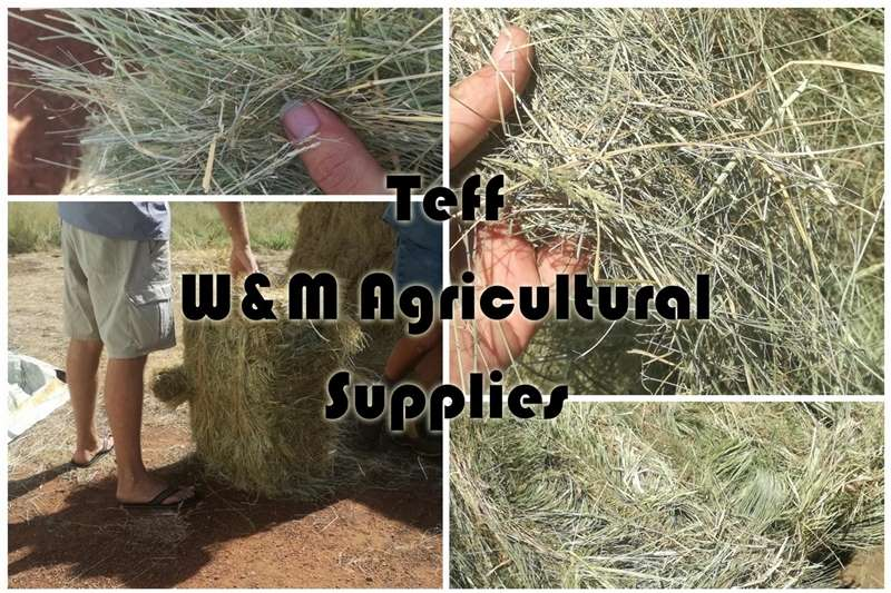 Feed mixers Grass and Lucerne Hay for sale Livestock
