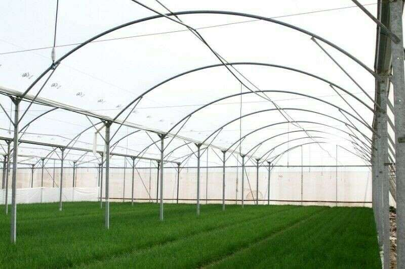 Feed mixers Greenhouse Design, Manufacture, Turn Key Solutions Livestock