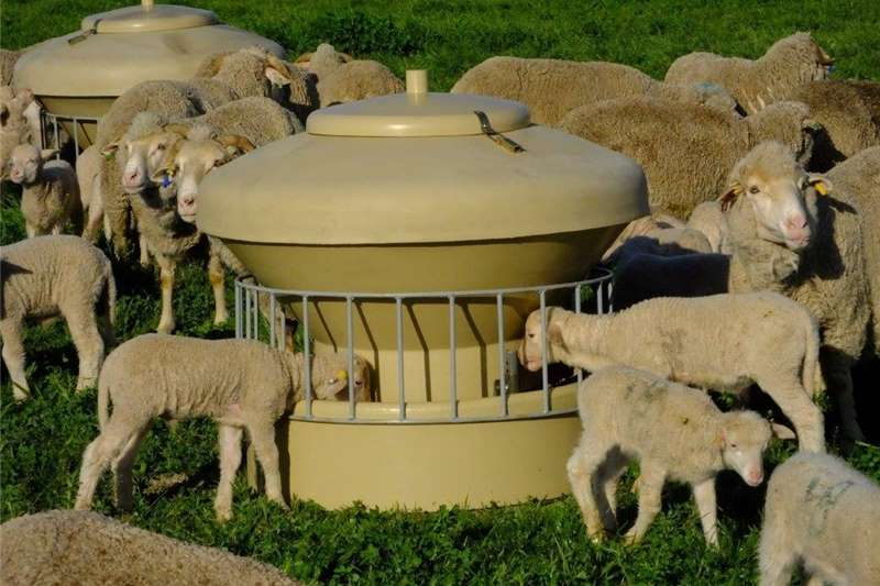 Livestock Feeding systems Feeder for Sheep/Goats and Game animals