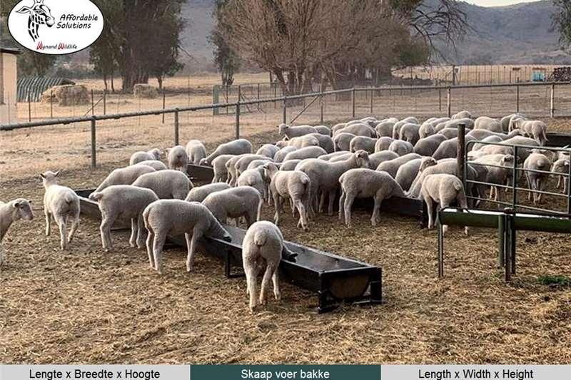 Feeding systems Sheep feeding troughs Livestock