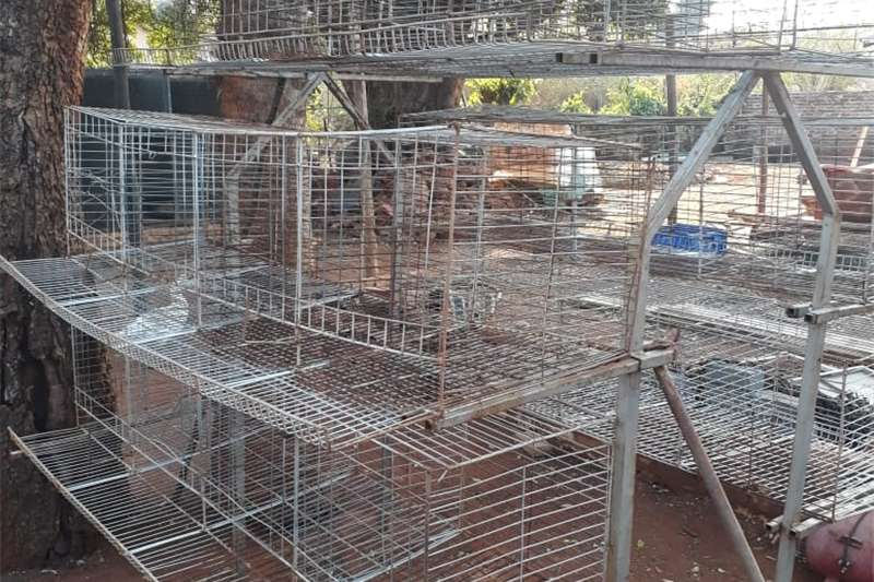 Livestock handling equipment Livestock crushes and equipment CHICKEN BATTERIES EGG LAYING CAGES