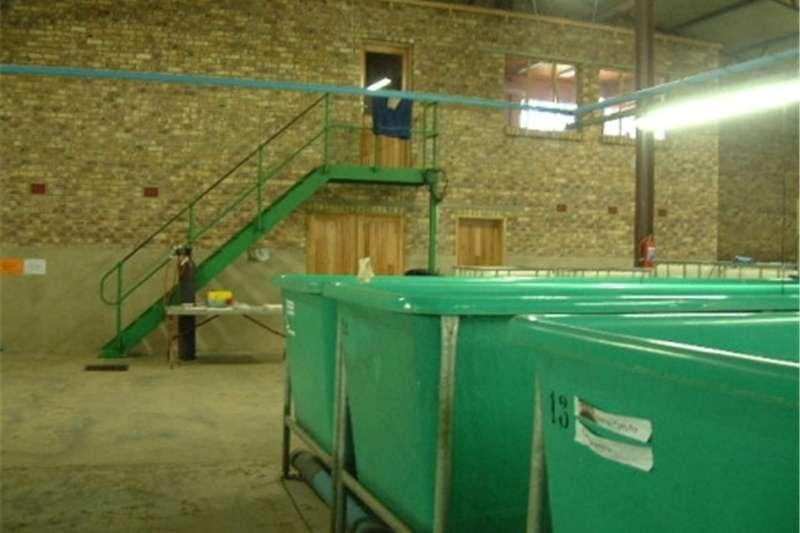 Livestock crushes and equipment Complete Indoor Fish Plants for Sale Livestock handling equipment