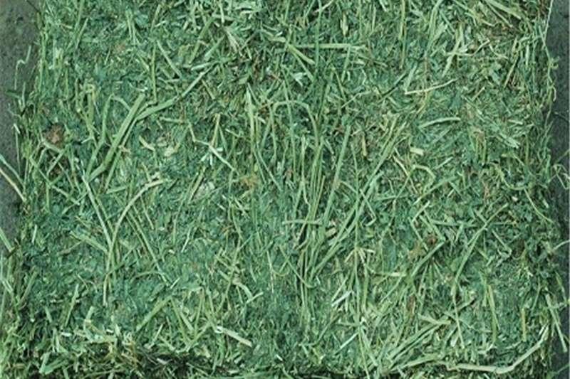 Livestock Livestock feed Alfalfa Hay / Timothy Alfafa Hay / Rhode Hay for s