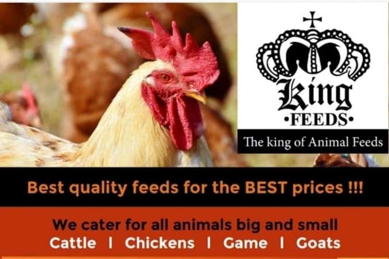 Livestock feed Animal Feeds Livestock
