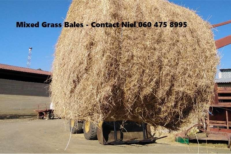 Livestock Livestock feed Bales for sale – I have Teff, Lucerne, Eragrosti