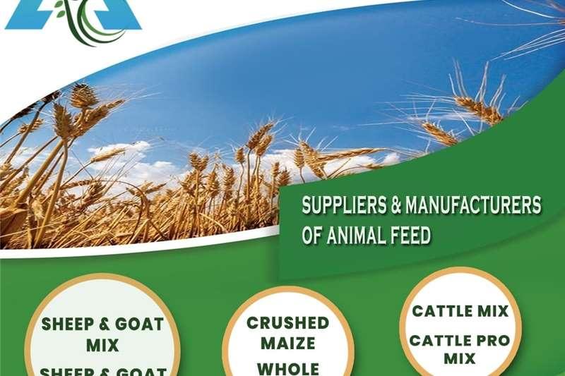 Livestock feed Cattle & goat feed Livestock