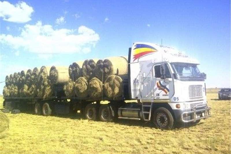 Livestock Livestock feed Delmas Eragrostis