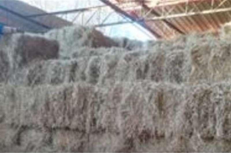 Livestock feed Grass bale Livestock