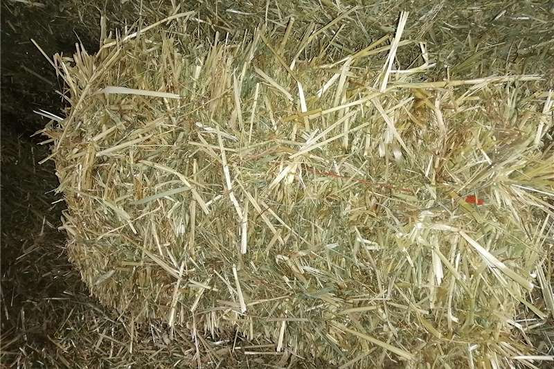 Livestock feed Hawer balle Livestock