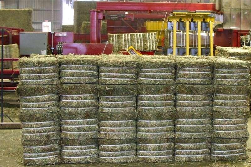 Livestock Livestock Feed Lucerne   / Alfalfal Hay Bales For Sale