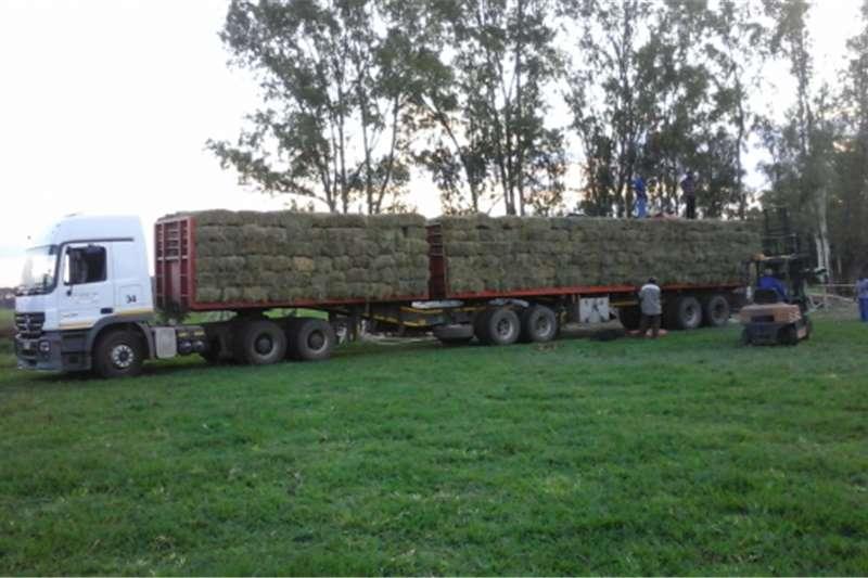 Livestock feed Lucerne for Sale! Grotvlei, North of Pretoria Livestock
