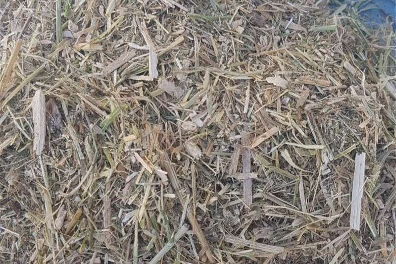 Livestock Livestock Feed Lucerne winter feed mix