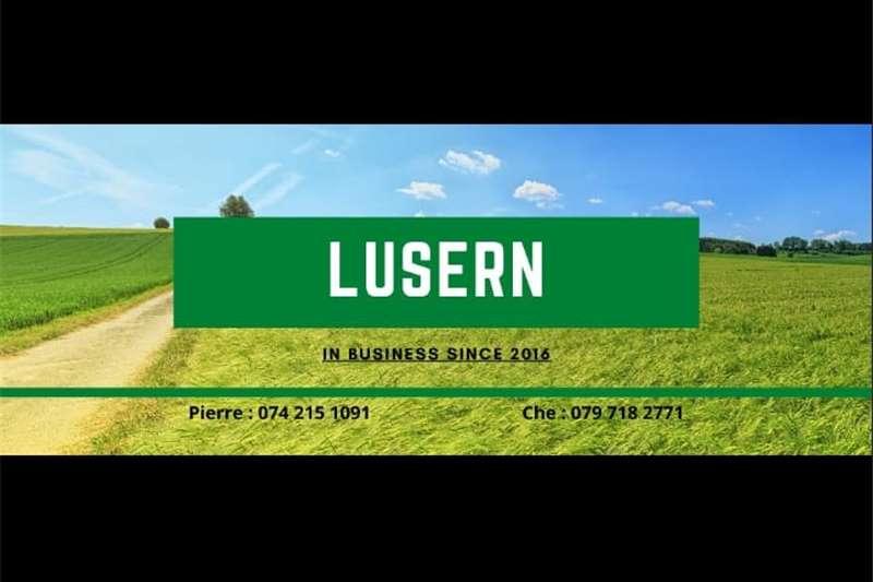 Livestock feed Lusern A Grade Livestock