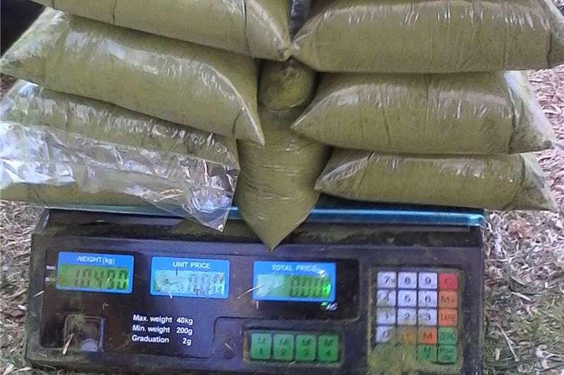 Livestock feed Moringa powder for horse feeds Livestock