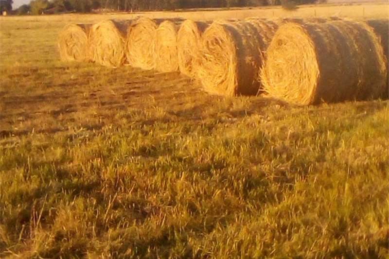 Livestock feed Naturlike Gras bale voer Livestock