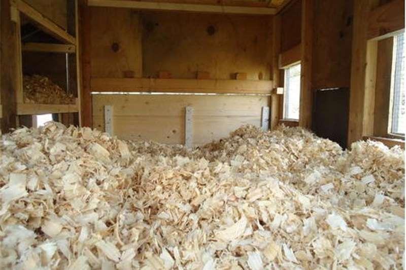 Livestock Livestock feed Shavings   per bag