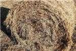Livestock feed Smutsfinger bale Livestock