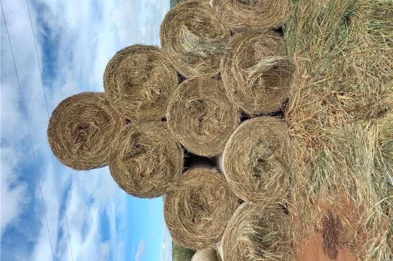 Livestock feed Smutsvinger Bale / Bales for sale Livestock