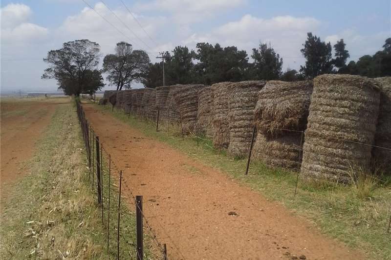 Livestock feed Sojareste Bale te koop Livestock