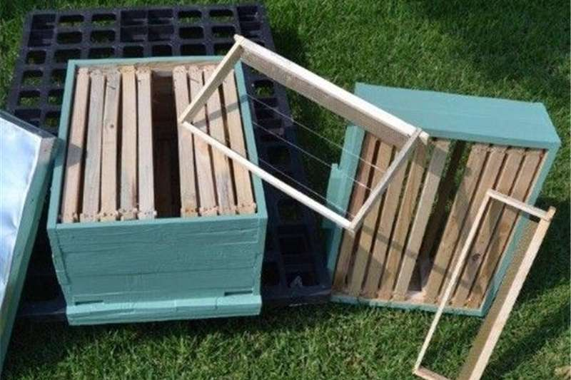 Other livestock Beehives For Sale Livestock