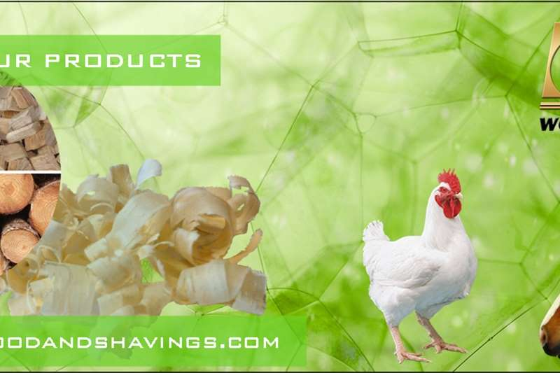 Livestock Other livestock Pine Wood Shavings for Chickens and Horses