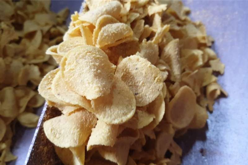 Pigs 2.5 tons expired Corn Chips as pig food for collec Livestock