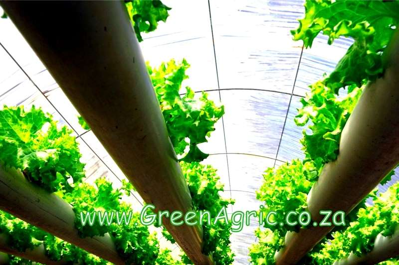 Other GreenAgric's Lay By Offers 2019