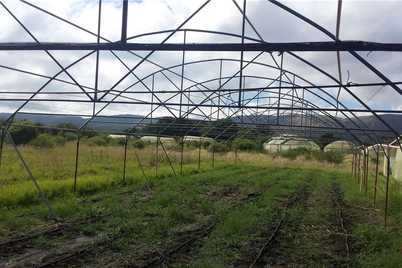 Other Greenhouse Tunnels 30x10m