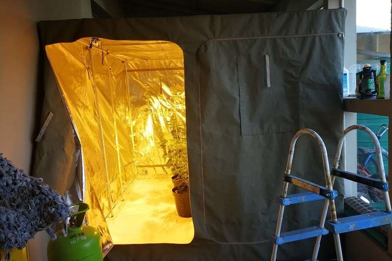Other GROW TENT 3m x 2.5m x 2.2m CANVAS with REFLECTIVE