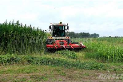 Other Forage harvesters Special Hemp Harvest Header Harvesting equipment