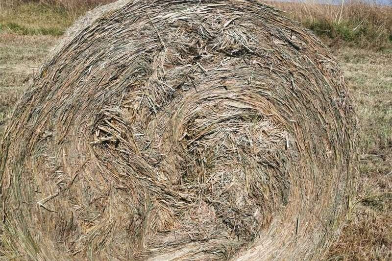 Planting and seeding equipment No till planters Smutsvinger bale