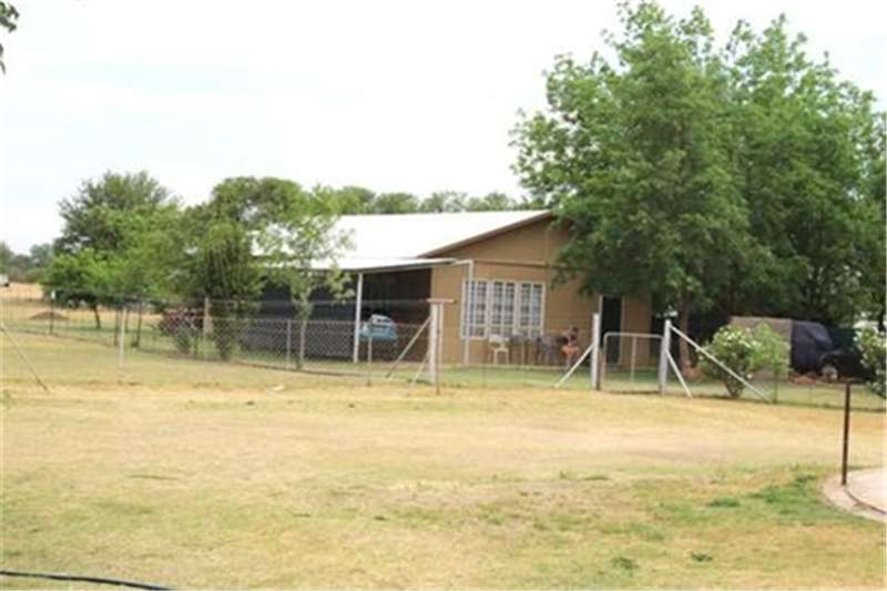 Property Farms 2.5 ha Small Holding at Vyfhoek, new in Market!!