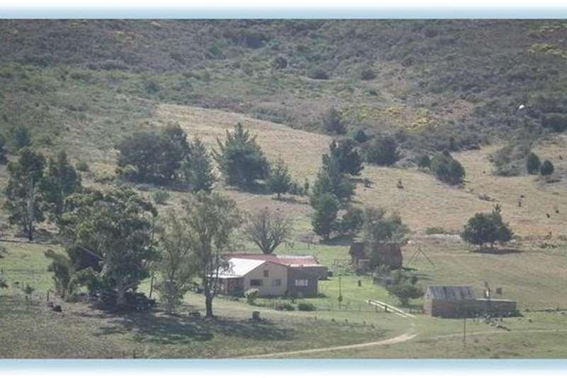 Property Farms 2010