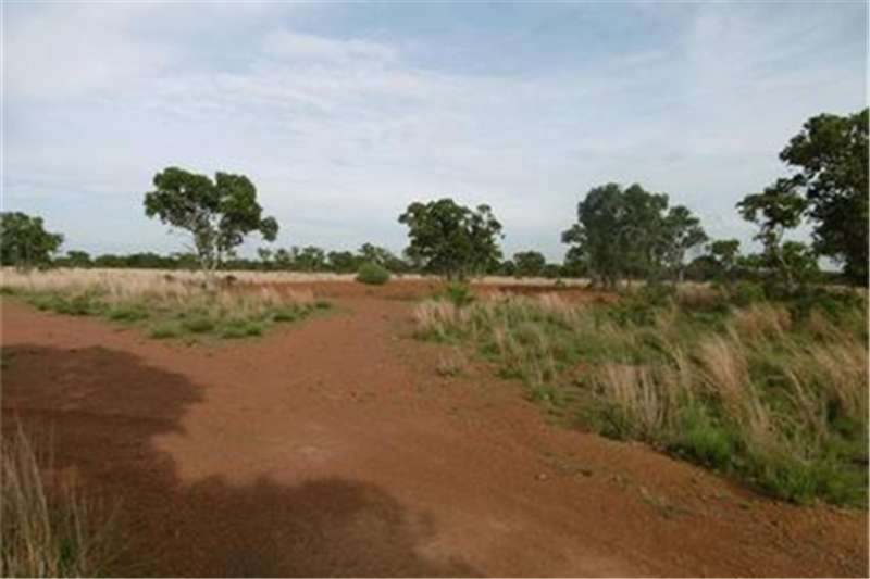 Property Farms 21.4 ha  Vacant land   Dinokeng area