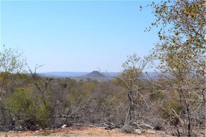 Farms 21 ha stand in Big 5 game reserve Property