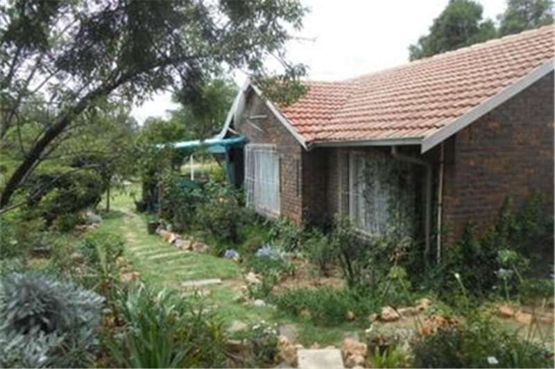Property Farms Cash Buyers Only! Smallholding with 2 houses on th
