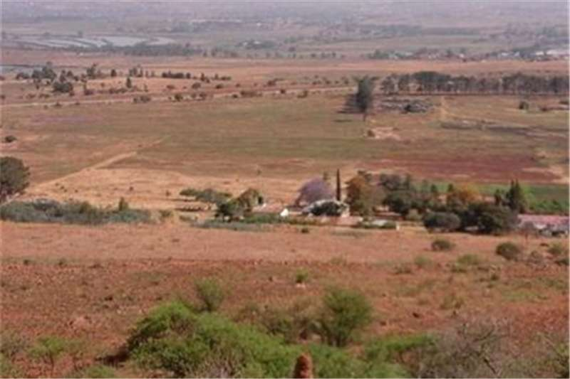 Property Farms Farm For Sale in Elandsfontein