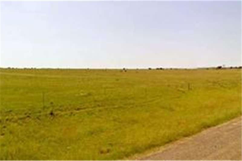 Property Farms Farm For Sale in Hertzogville