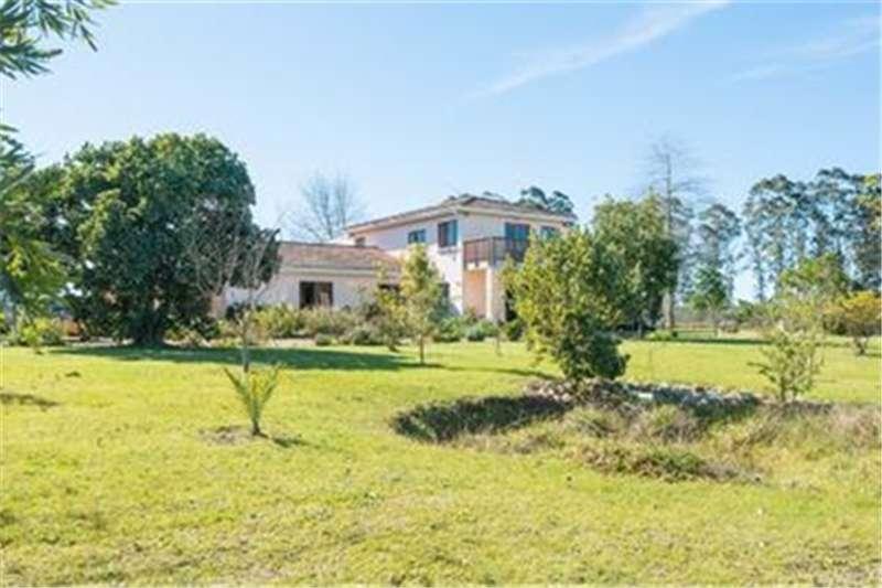 Property Farms Farm For Sale in RHEENENDAL